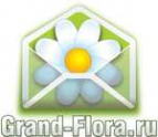Логотип компании Доставка цветов Гранд Флора (ф-л г.Воткинск)